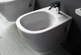 Біде: вибір, встановлення та підключення до каналізації